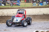 wingless 6 t6 chris breen-4