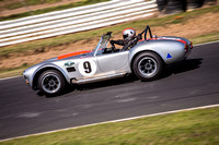 9 Armin Baier - Cobra - Regularity Sports & Racing Cars - Saturday-3