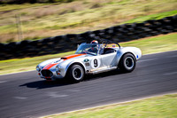 9 Armin Baier - Cobra - Regularity Sports & Racing Cars - Saturday-8