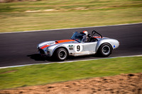 9 Armin Baier - Cobra - Regularity Sports & Racing Cars - Saturday-5