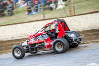 wingless 6 t6 chris breen-7