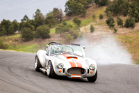 9 Michael Baier Cobra Regularity Sports & Racing Cars Group 2 - Saturday-2