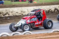 wingless 6 t6 chris breen-3